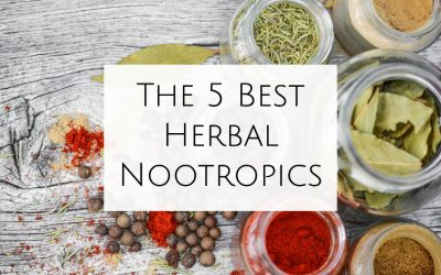 Top 5 Best Herbal Nootropics for Productivity (2021 Reviews)