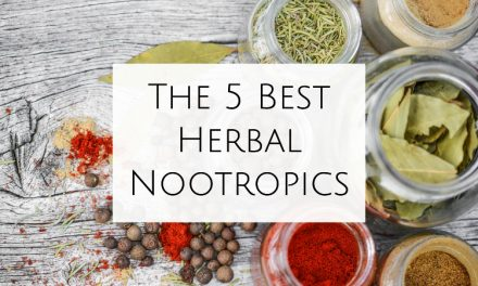 5 Little-Known Herbal Nootropics That'll Skyrocket Your Productivity
